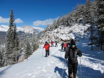 Winter Trail Guide