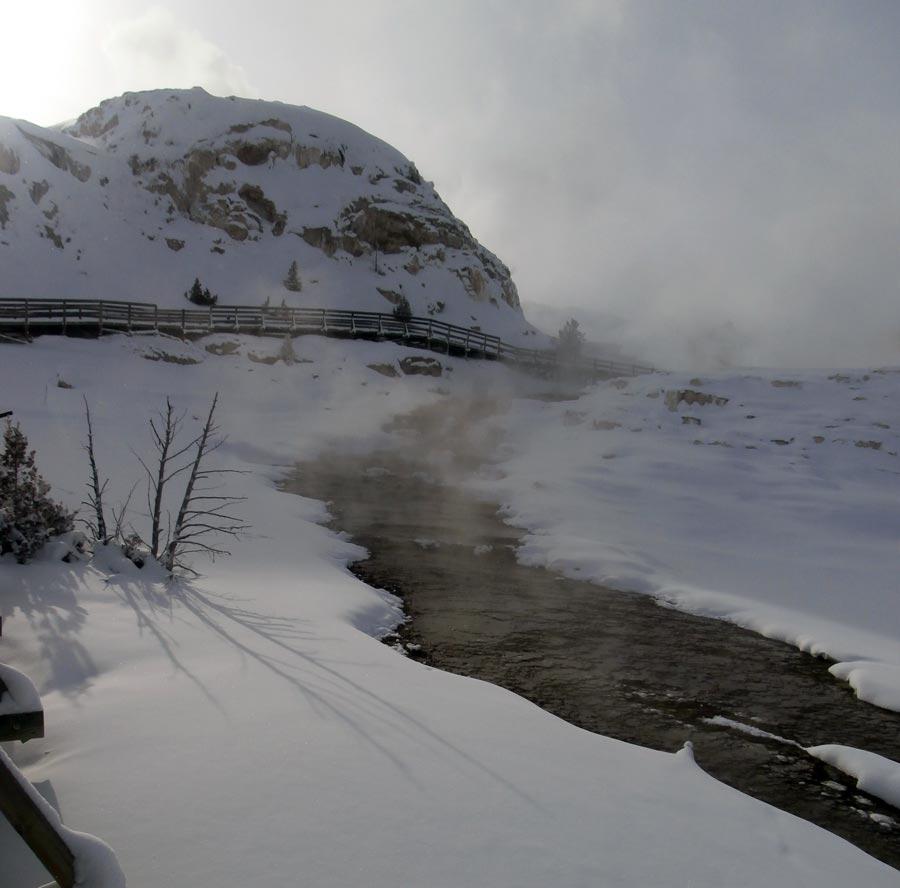 Yellowstone National Park - Genuine Montana